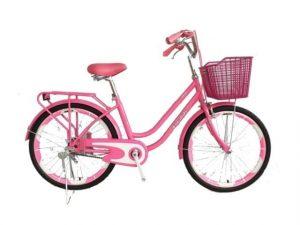 xe đạp mini vuông vành 20