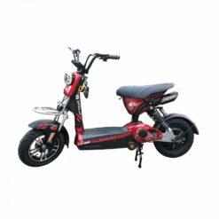 giá bán xe đạp điện 133 phantom