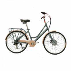 xe đạp mini nữ